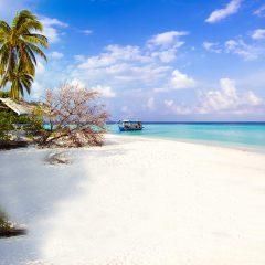 Thousand Island Resort